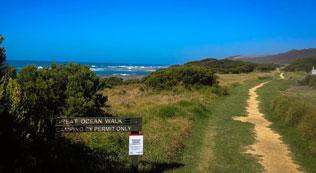 Beginning of the Great Ocean Walk