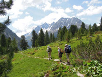 Hiking in the European Alps