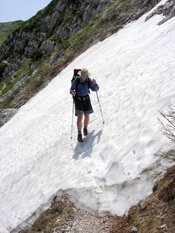 Hiker using poles