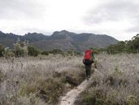 Crossing the Arthur Plains