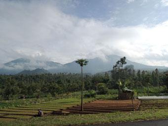 Indonesian Scenery